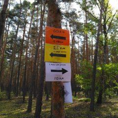 Mácháč Run Fest 2016: DNF jak vyšitýgall-2